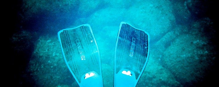snorkeling_fins